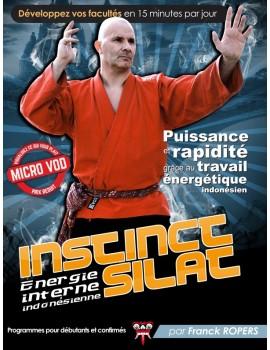 """VOD """"Instinct Silat"""" Travail énergétique"""